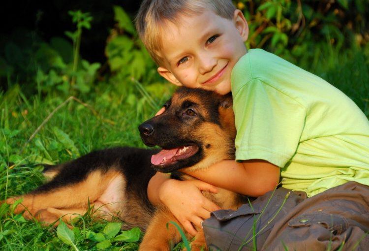 Хочу взять собаку
